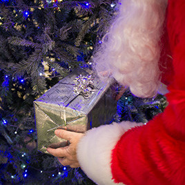 Eldon Garden Christmas Grotto Present